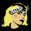 Canvas Collection: Blondie Punk