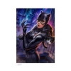 DC Comics Art Print Catwoman #21