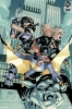 DC Comics: Batgirl and the Birds of Prey