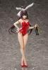 Houki Shinonono Bare Leg Bunny Version