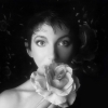 Kate Bush: Remastered In Vinyl Part 2 (Box 4 Lp)