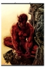Marvel: Daredevil Wall Scroll 70x100 poster