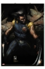 Marvel: Wolverine Wall Scroll 100x70 poster