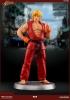 PCS - Street Fighter Statue 1/8 Ken