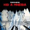 Radiohead: Kid A Mnesia (Black Vinyl)