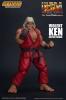 Street Fighter II: The Final Challengers Violent Ken