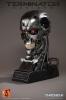 Terminator Genisys: Endoskeleton Skull