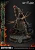 The Witcher 2: Assassins of Kings - Iorveth