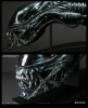 CoolProps - Alien Warrior Blue Ed. LifeSize Head Replica