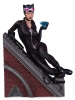 DC Collectibles: Catwoman Multi part Statue
