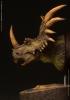 Damtoys: Styracosaurus Green Version Bust