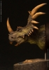 Damtoys: Styracosaurus Green Version Bust