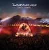 David Gilmour | Live at Pompeii
