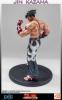 F4F - Tekken 5 Statue 1/4 Jin Kazama