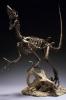 Griffon Master Fossil Skeleton Model Series Velociraptor