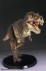 Griffon: Master Fossil Life Model Series Tyrannosaurus Rex