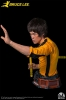 Infinity Studio - Bruce Lee Life-Size Bust