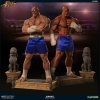PCS: Street Fighter Sagat Exclusive Evolution Set