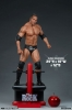 PCS - WWE Statue 1/4 The Rock