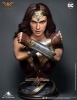 Queen Studios- Wonder Woman 1/1 Scale Bust