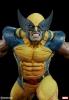 Sideshow: Wolverine Premium Format™ Figure