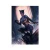 Sideshow - Art Print Catwoman Variant