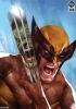 The Incredible Hulk vs Wolverine Premium Print