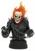 arvel Bust 1/6 Ghost Rider